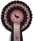 Traditional Rosettes